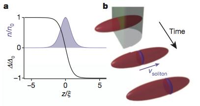Heavy solitons in a fermionic superfluid