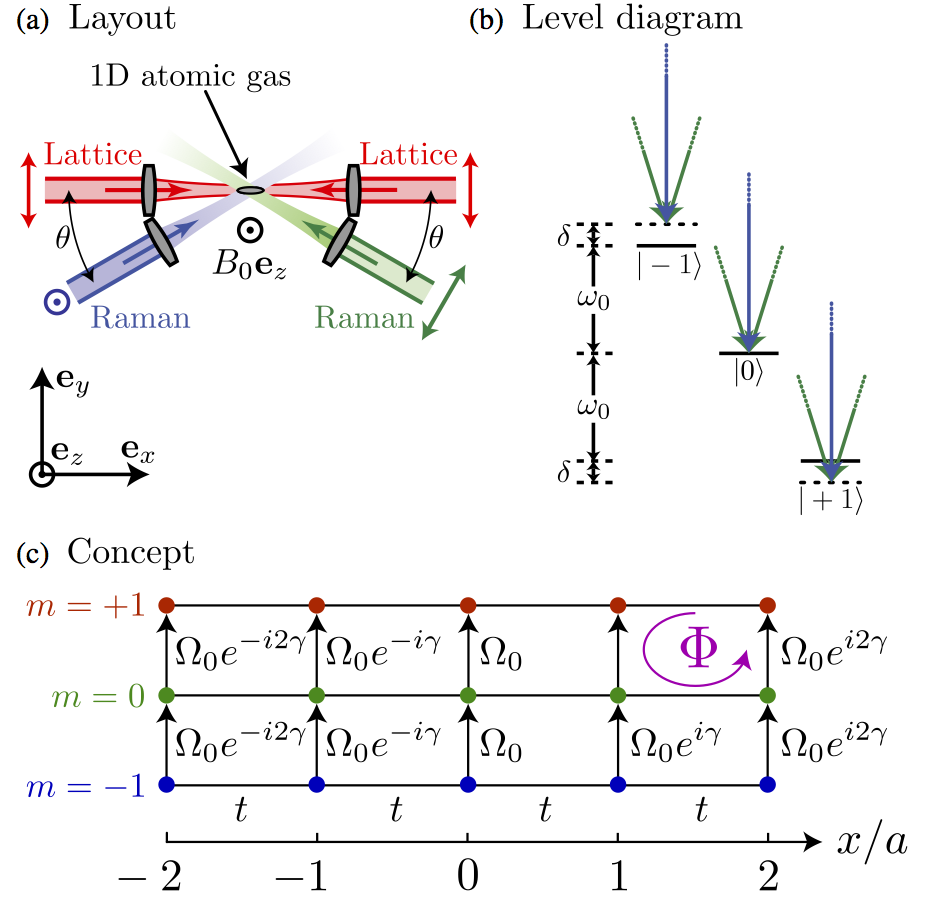 Synthetic gauge fields in synthetic dimensions