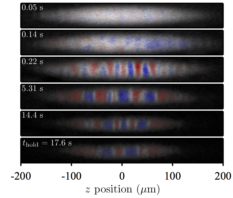 Quenched binary Bose-Einstein condensates: Spin-domain formation and coarsening