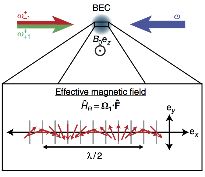 Magnetic phases of spin-1 spin–orbit-coupled Bose gases