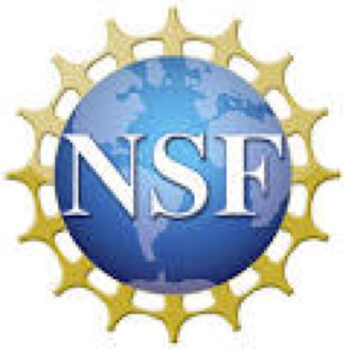 Quantum leap challenge institute for robust quantum simulation: funded!